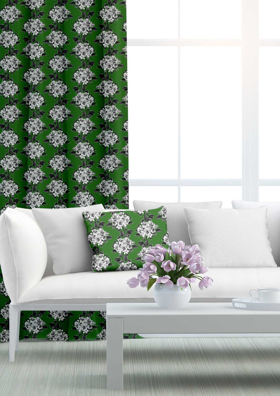 Hydrangea Emerald