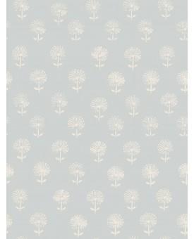 Agapanthus Chalk