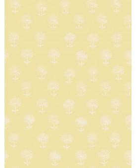 Agapanthus Flax