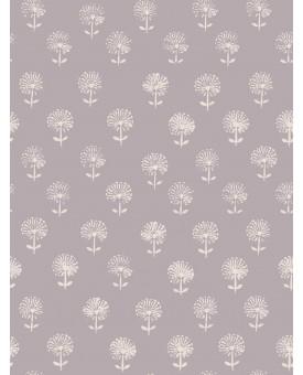 Agapanthus Lilac