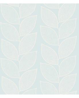 Beanstalk Birch
