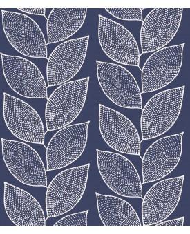 Beanstalk Cornflower