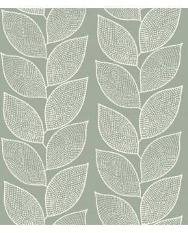 Beanstalk Lichen