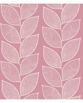 Beanstalk Pink Lemonade