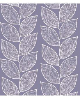Beanstalk Salvia