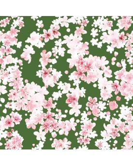 Cherry Blossom Cactus