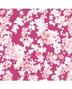 Cherry Blossom Calypso