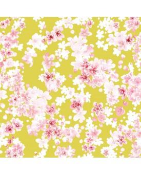Cherry Blossom Canary