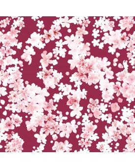 Cherry Blossom Desert Rose