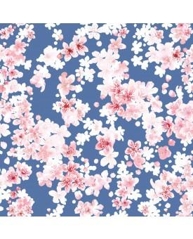 Cherry Blossom Jacaranda