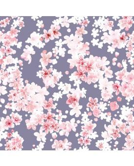 Cherry Blossom Salvia