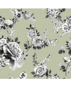 Fleur Limpet