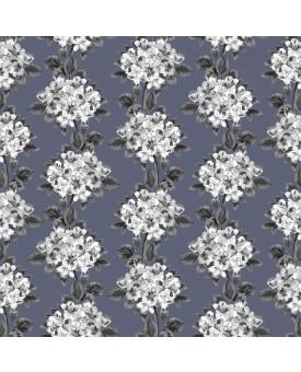 Hydrangea Dove