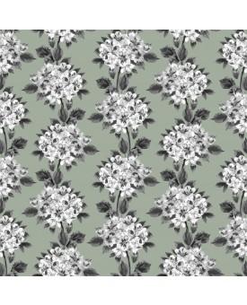 Hydrangea Lichen