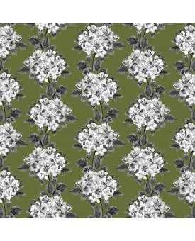 Hydrangea Moss