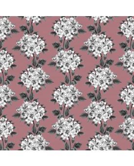 Hydrangea Pink Ink