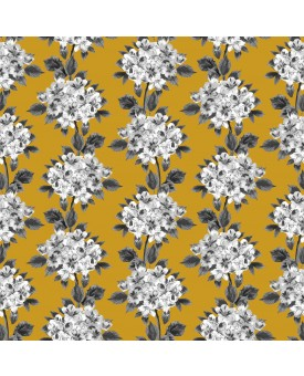 Hydrangea Saffron