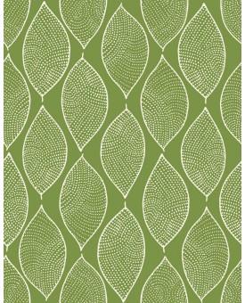 Leaf Mosaic Avocado