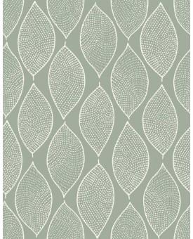Leaf Mosaic Lichen
