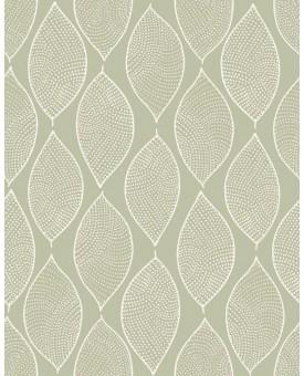 Leaf Mosaic Limpet