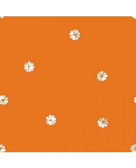 Serendipity Clementine