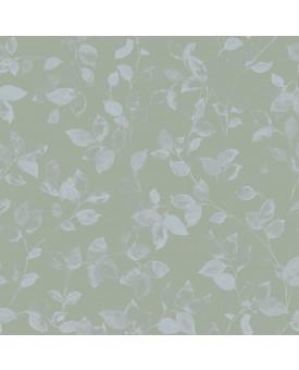 Sylvaticus Lichen